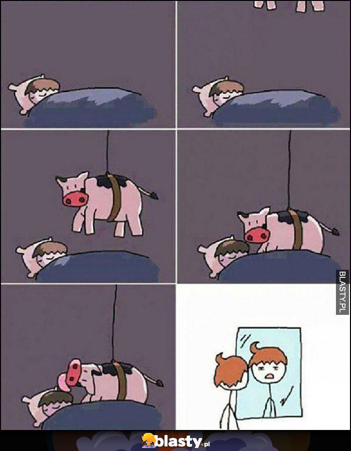 Fryzura podczas snu krowa zjeżdża na linie i liże włosy komiks