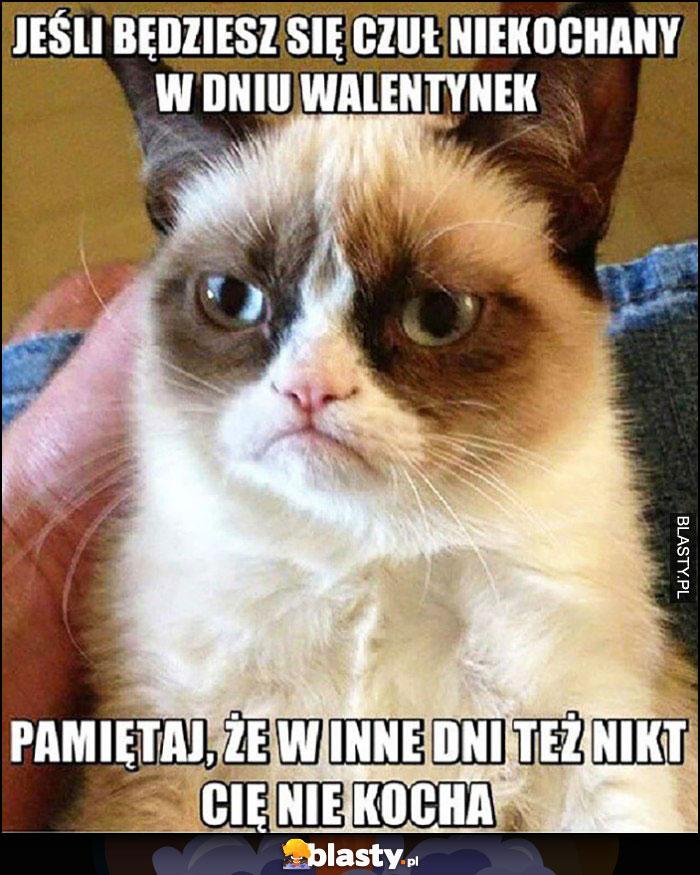 Jeśli będziesz się czuł niekochany w dniu walentynek pamiętaj, że w inne dni też nikt Cię nie kocha Grumpy Cat