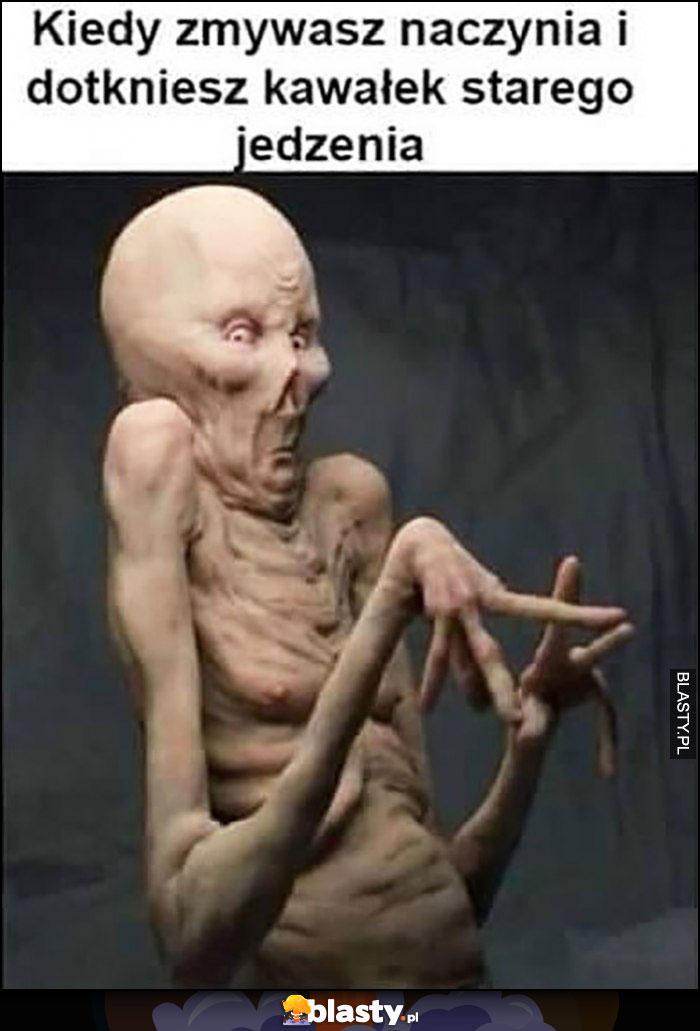 Kiedy zmywasz naczynia i dotkniesz kawałek starego jedzenia obrzydliwe