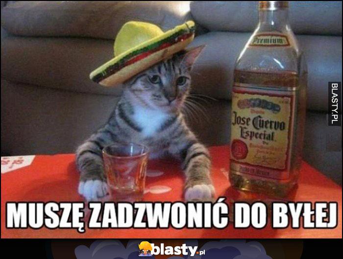 Kot pijany pije tequilę muszę zadzwonić do byłej