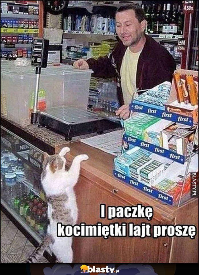 Kot robi zakupy i paczkę kocimiętki lajt proszę