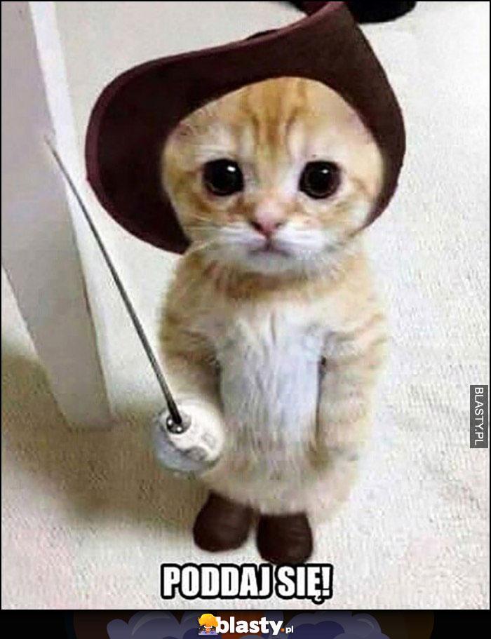 Kot z mieszem szablą poddaj się mały kotek
