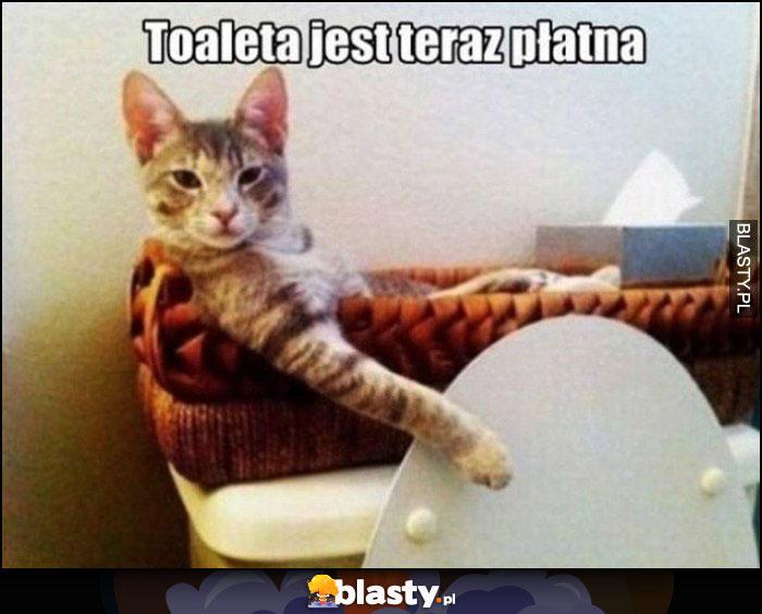 Toaleta jest teraz płatna kot pobiera opłatę