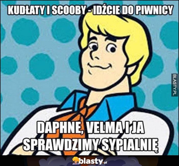 Kudłaty i Scooby idźcie do piwnicy, Daphne, Velma i ja sprawdzimy sypialnię