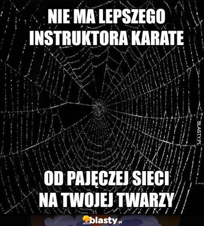 Nie ma lepszego instruktora karate od pajęczej sieci na Twojej twarzy