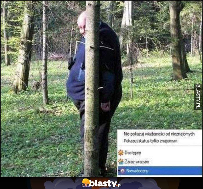 Status Gadu-Gadu niewidoczny jak grubas ukryty za małym drzewkiem