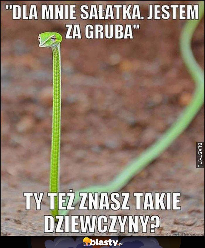Chudy wąż dla mnie sałatka, jestem za gruba. Ty też znasz takie dziewczyny?
