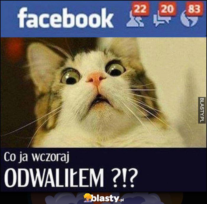 Kot dużo powiadomień na facebooku co ja wczoraj odwaliłem