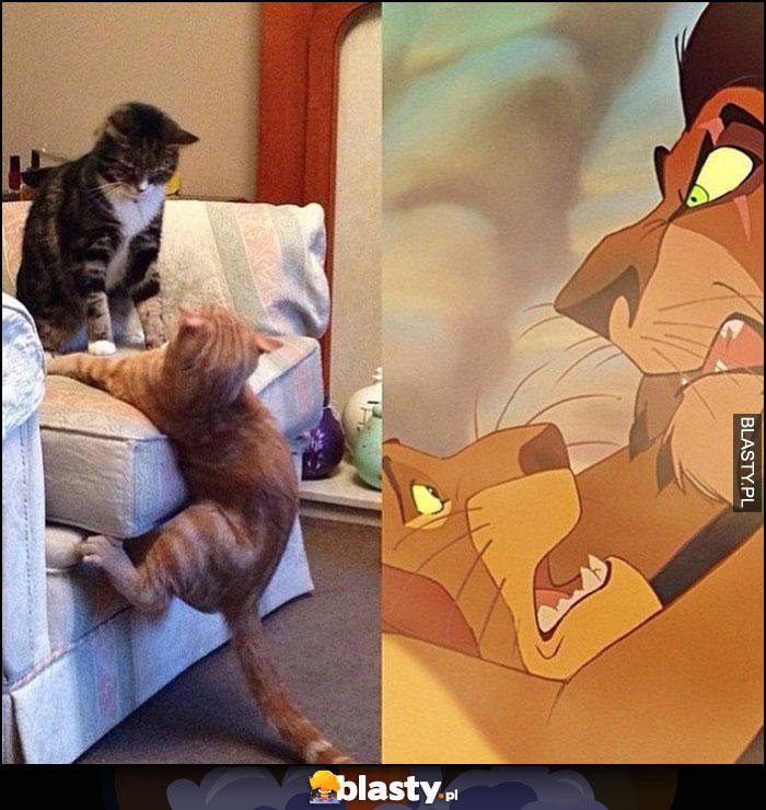 Kot spada z tapczanu łóżka, scena jak w Król Lew Mufasa Skaza