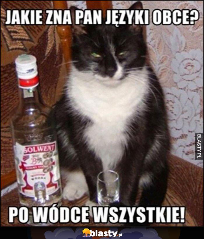 Kot zna Pan języki obce? Po wódce wszystkie!