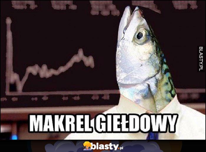 Makrel giełdowy ryba makrela w koszuli