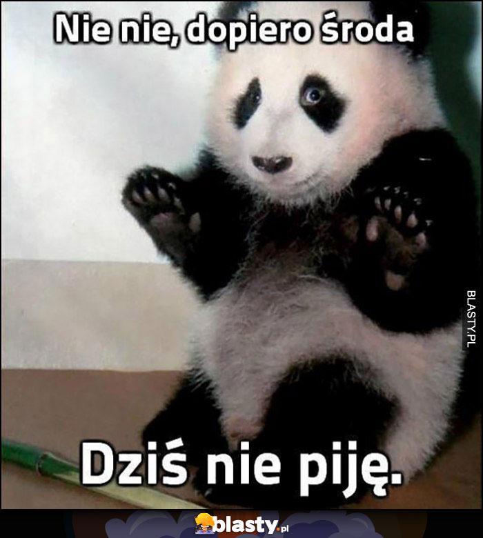 Nie nie, dopiero środa, dziś nie piję panda