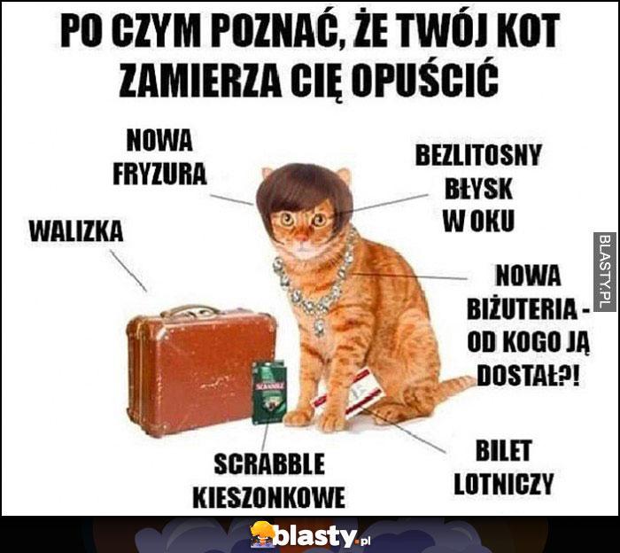 Po czym poznać, że Twój kot zamierza Cię opuścić: walizka, fryzura, bilet lotniczy, scrabble kieszonkowe, nowa biżuteria, bezlitosny błysk w oku