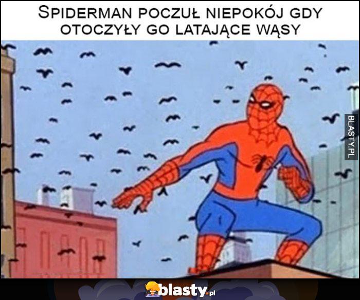 Spiderman poczuł niepokój gdy otoczyły go latające wąsy