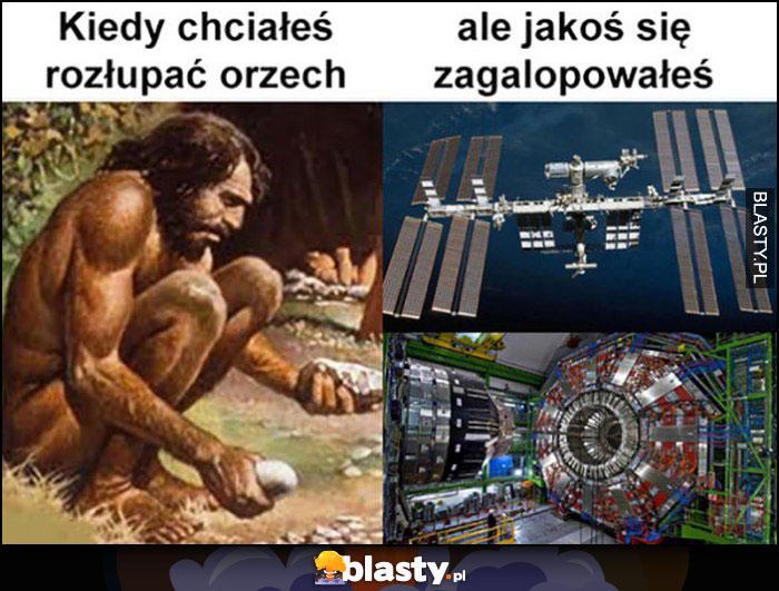 Człowiek pierwotny kiedy chciałeś rozłupać orzech ale jakoś się zagalopowałeś stacja kosmiczna ewolucja ludzkości