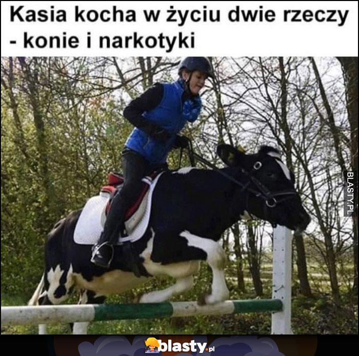 Kasia kocha w życiu dwie rzeczy - konie i narkotyki, jedzie na krowie