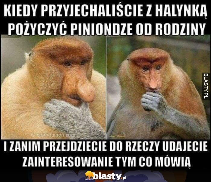 Kiedy przyjechaliście z Halinką pożyczyć pieniądze od rodziny i zanim przejdziecie do rzeczy udajecie zainteresowanie tym co mówią typowy Polak nosacz małpa