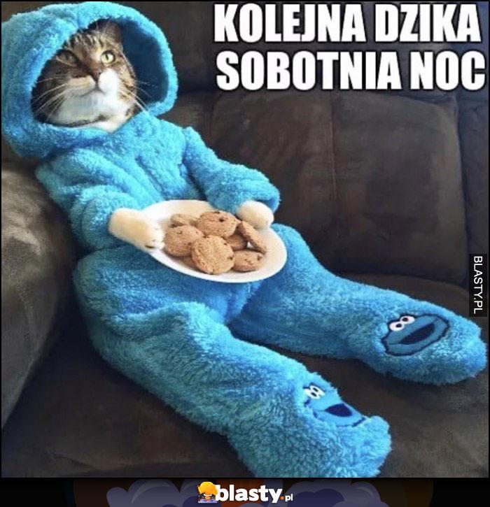 Kolejna dzika sobotnia noc kot w przebraniu ciasteczkowy potwór