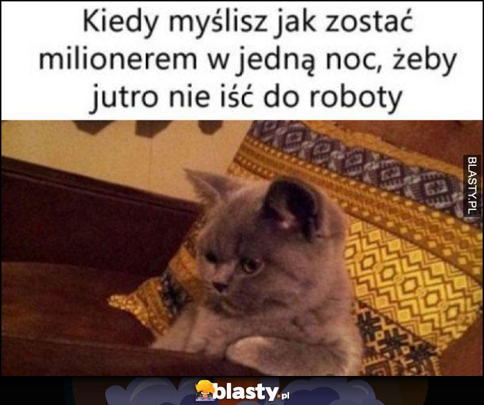 Kot kiedy myślisz jak zostać milionerem w jedną noc, żeby jutro nie iść do roboty