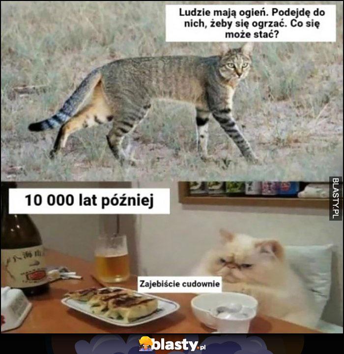Kot kiedyś ludzie mają ogień, podejdę do nich żeby się ogrzać, 10000 lat później zarąbiście cudownie