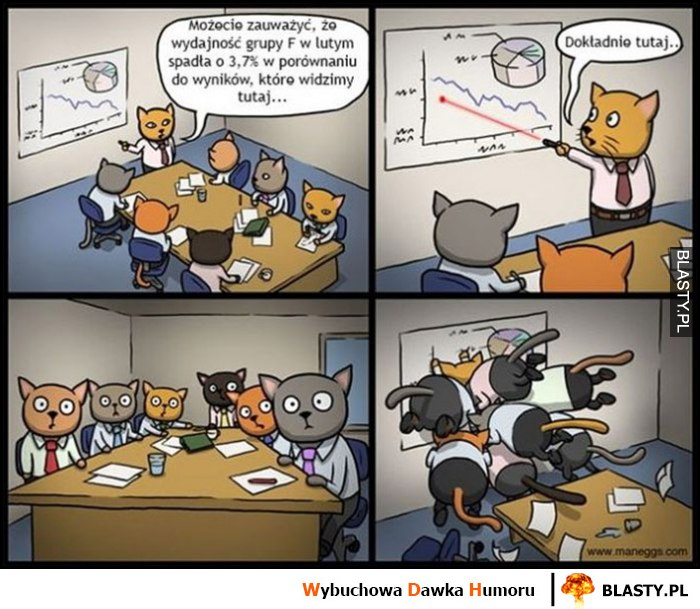 Koty prezentacja biznesowa, pokazuje laserowym wskaźnikiem, wszystkie koty się rzucają