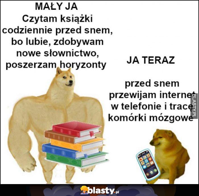 Mały ja: czytam książki, poszerzam horyzonty, ja teraz: przewijam internet i tracę komórki mózgowe pieseł doge
