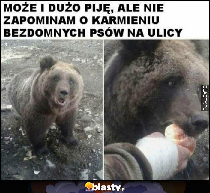 Może i dużo piję, ale nie zapominam o karmieniu bezdomnych psów na ulicy niedźwiedź