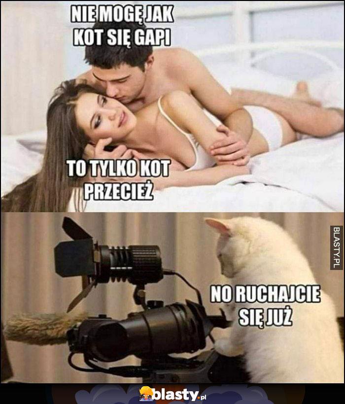 Nie mogę jak kot się gapi, przeciesz to tylko kot. Kot z kamerą: no ruszajcie się już