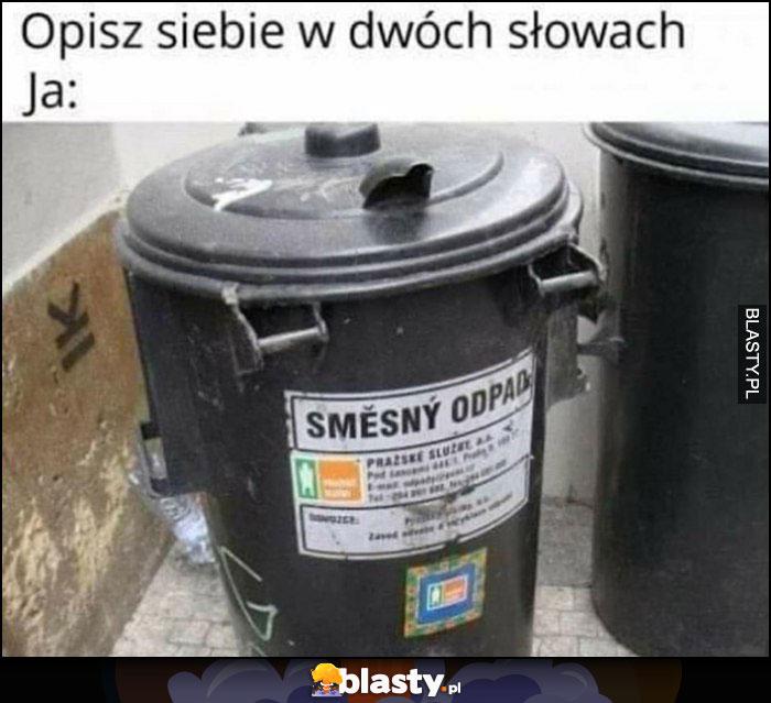 Opisz siebie w dwóch słowach, ja: śmieszny odpad Czeskie memy