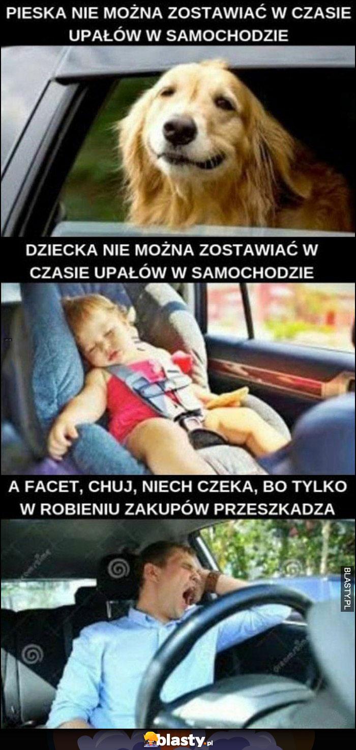 Pieska, dziecka nie można zostawiać w czasie upałów w samochodzie, a facet niech czeka bo tylko w robieniu zakupów przeszkadza