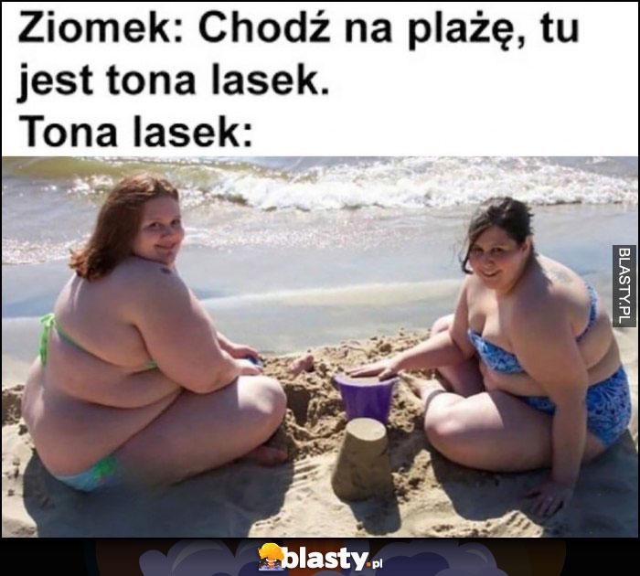 Ziomek: chodź na plażę, tu jest tona lasek. Tona lasek: dwie grube wieloryby