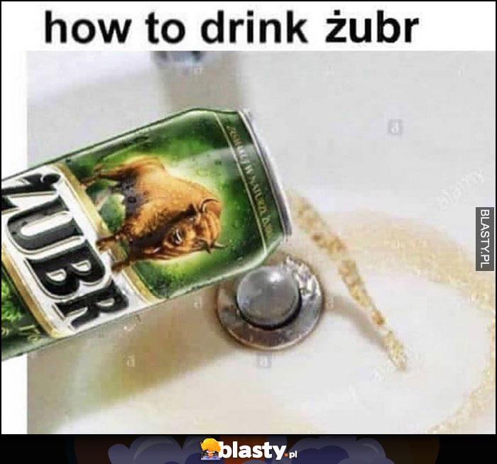 Jak pić piwo Żubr: wylać do zlewu kibla