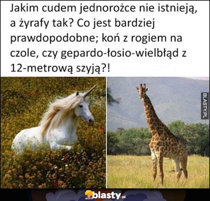 Jakim cudem jednorożce nie istnieją a żyrafy tak? Co jest bardziej prawdopodobne końc z rogiem na czole czy gepardo-łosio-wielbłąd z 12-metrową szyją?