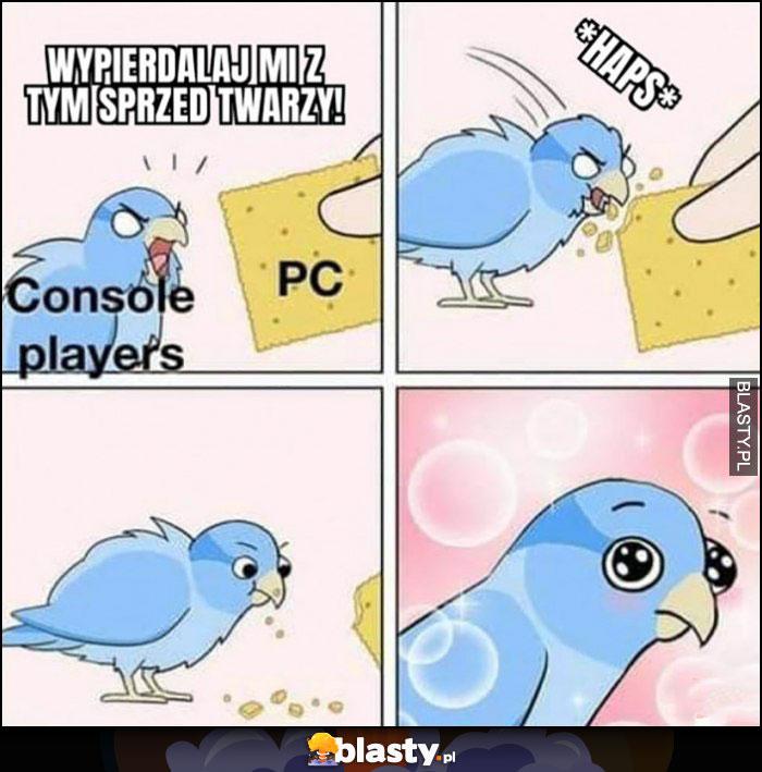 Konsole PC, spieprzaj mi z tym gołąbek jednak się spodobało komiks