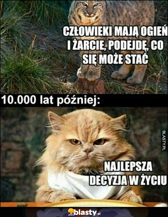Kot: człowieki mają ogień i żarcie, podejdę, co może się stać, 10 000 lat później: najlepsza decyzja w życiu