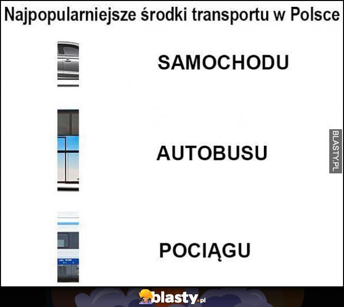Najpopularniejsze środki transportu w Polsce dosłownie: samochodu, autobusu, pociągu