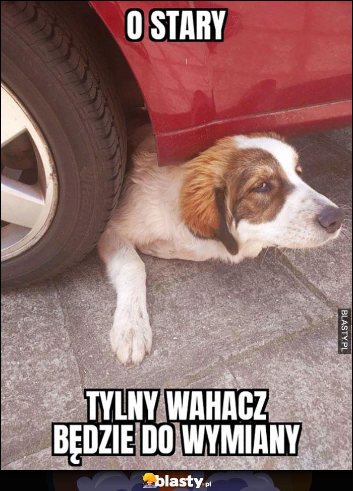 O stary tylny wahacz będzie do wymiany pies mechanik
