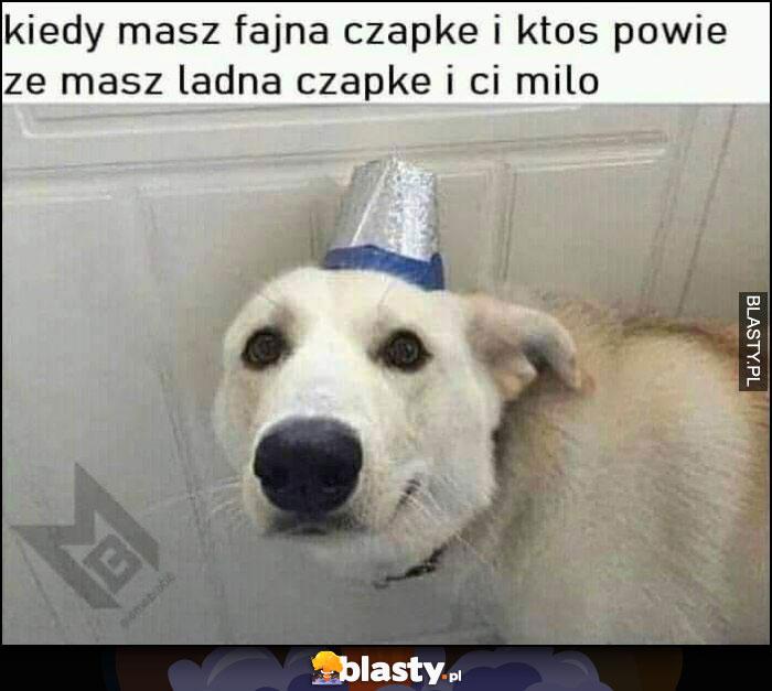 Pies kiedy masz fajną czapkę i ktoś powie, że masz ładną czapkę i ci miło