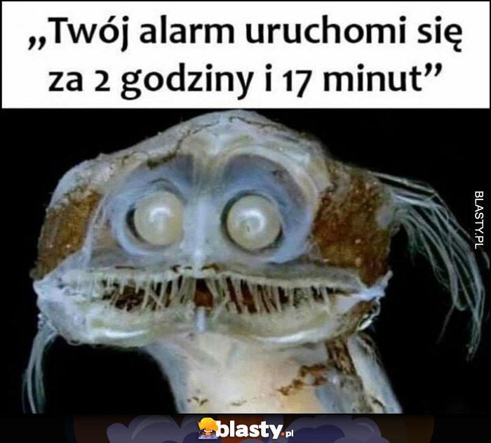 Twój alarm uruchomi się za 2 godziny i 17 minut