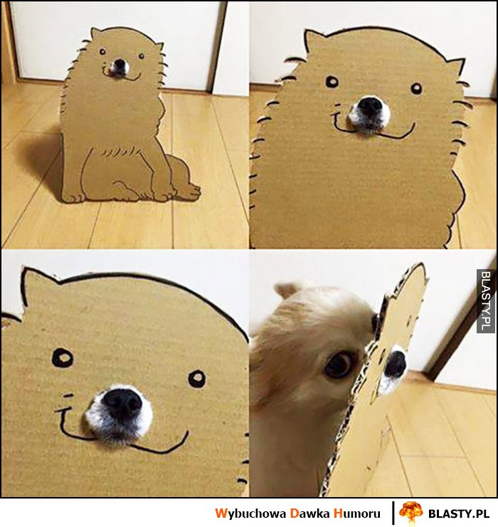 Uśmiechnięty piesek z tektury tak naprawdę pies się ukrywa chowa