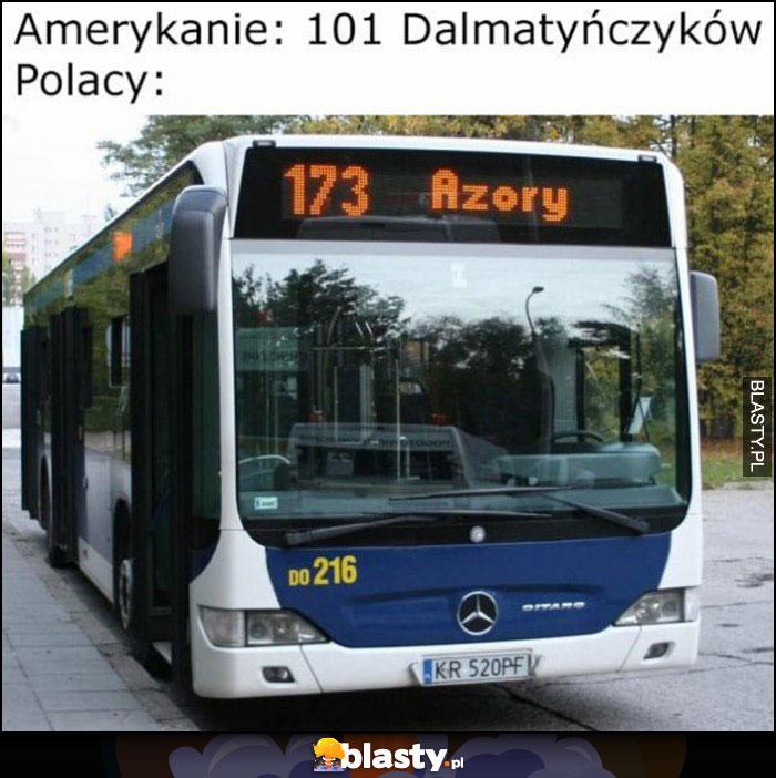 Amerykanie: 101 dalmatyńczyków, Polacy: 173 azory autobus