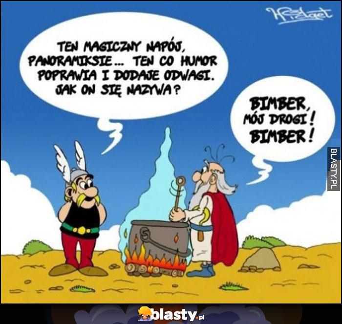 Asterix Panoramix, ten magiczny napój co poprawia humor i dodaje odwagi jak się nazywa? Bimber mój drogi