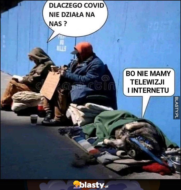 Bezdomni dlaczego Covid koronawirus na nas nie działa? Bo nie mamy telewizji i internetu