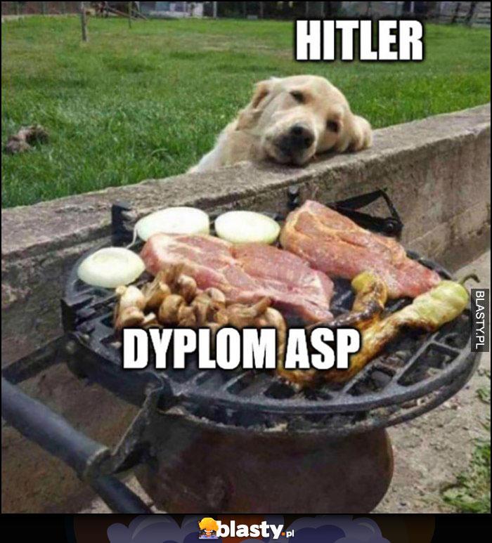Hitler, dyplom ASP pies patrzy na jedzenie na grillu