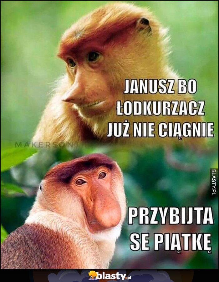 Janusz bo odkurzacz już nie ciągnię, przybijta se piątkę małpa Polak nosacz