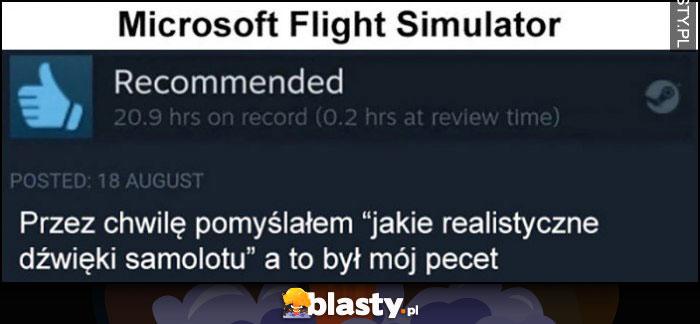 Microsoft Flight Simulator: przez chwilę myślałem