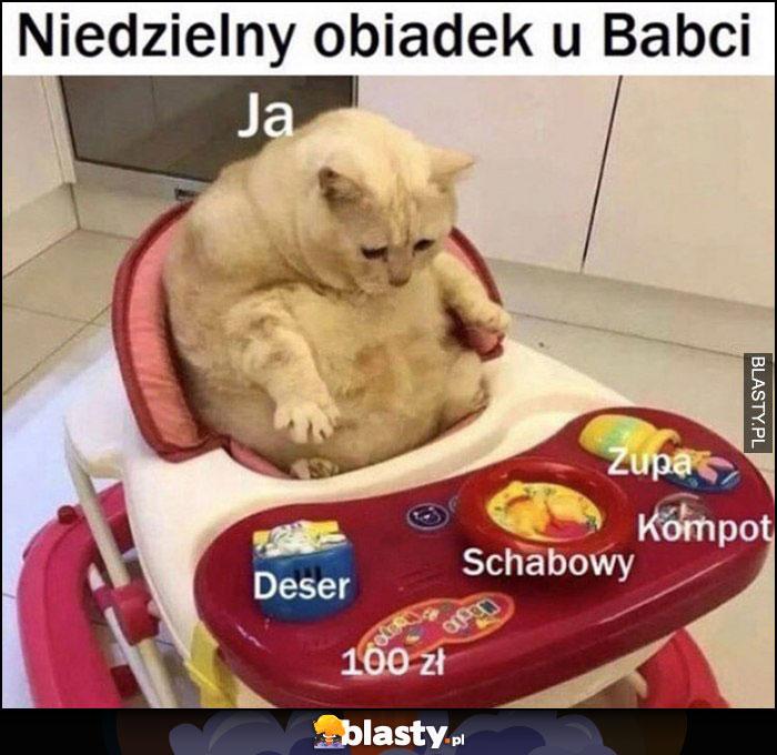 Niedzielny obiadek u babci ja kot: deser, schabowy, 100 zł, kompot, zupa