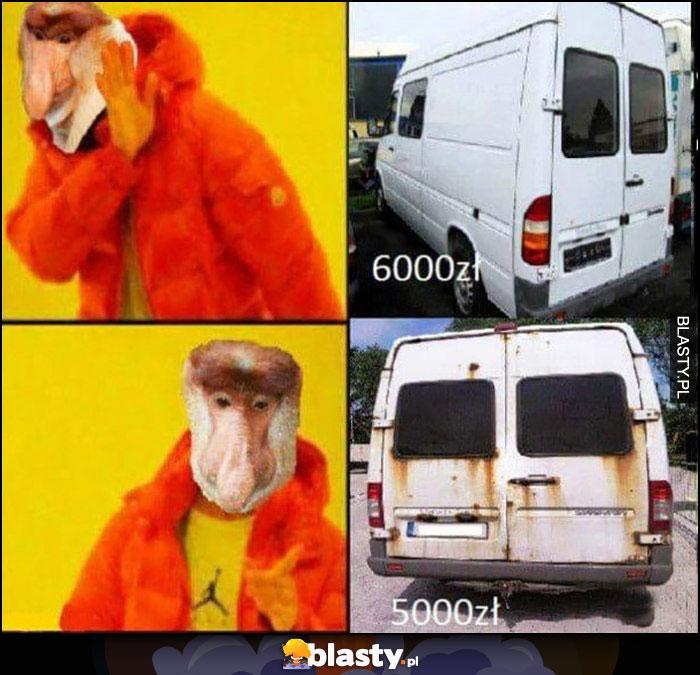 Polak nosacz nie chce idealnego Transita za 6000zł, woli gruza zgnitego za 5000zł