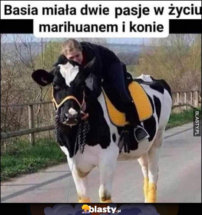 Basia miała dwie pasje w życiu: marihuanem i konie, siedzi na krowie