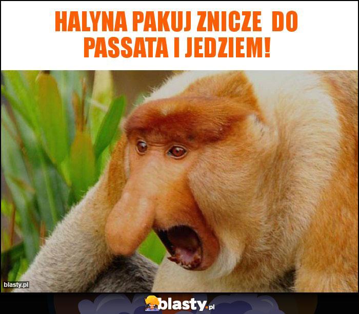 Halyna pakuj znicze  do Passata i jedziem!